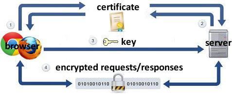 https encryption