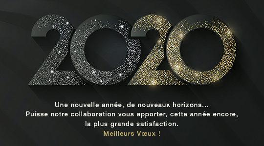 Belle année 2020 de netao