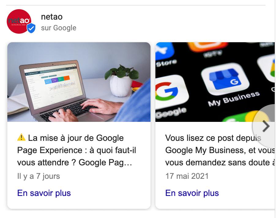 Posts Google My Business Netao